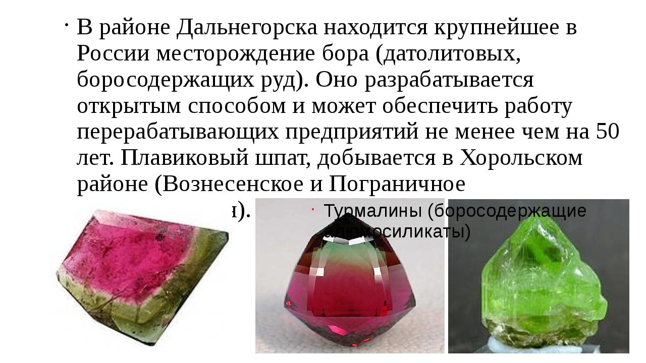 В районе Дальнегорска находится крупнейшее в России месторождение бора (датол...