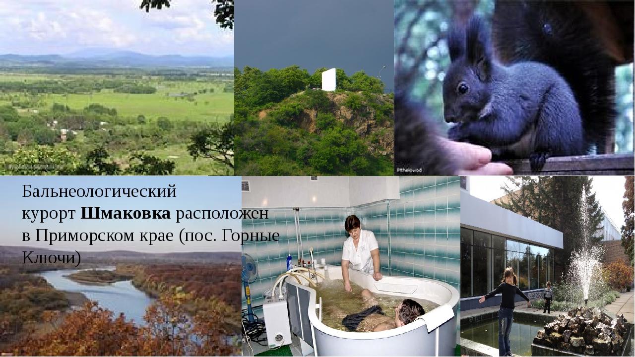 Бальнеологический курортШмаковкарасположен в Приморском крае (пос. Горные...