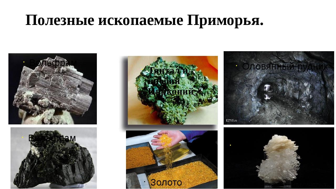 Полезные ископаемые Приморья. Золото Кварц Оловянный рудник Вольфрам Тантал и...
