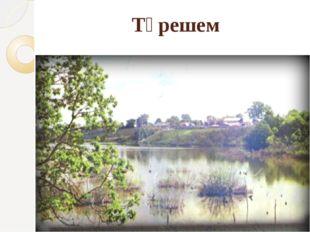 Түрешем