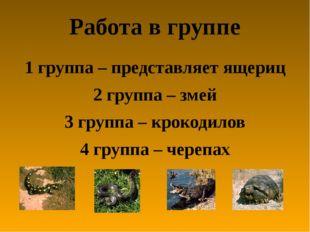 Работа в группе 1 группа – представляет ящериц 2 группа – змей 3 группа – кро