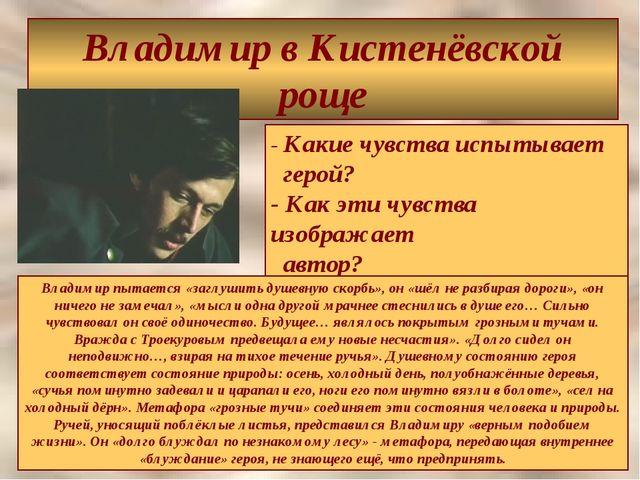 Владимир в Кистенёвской роще - Какие чувства испытывает герой? - Как эти чувс...