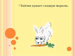 Зайчик кушает сладкую морковь.