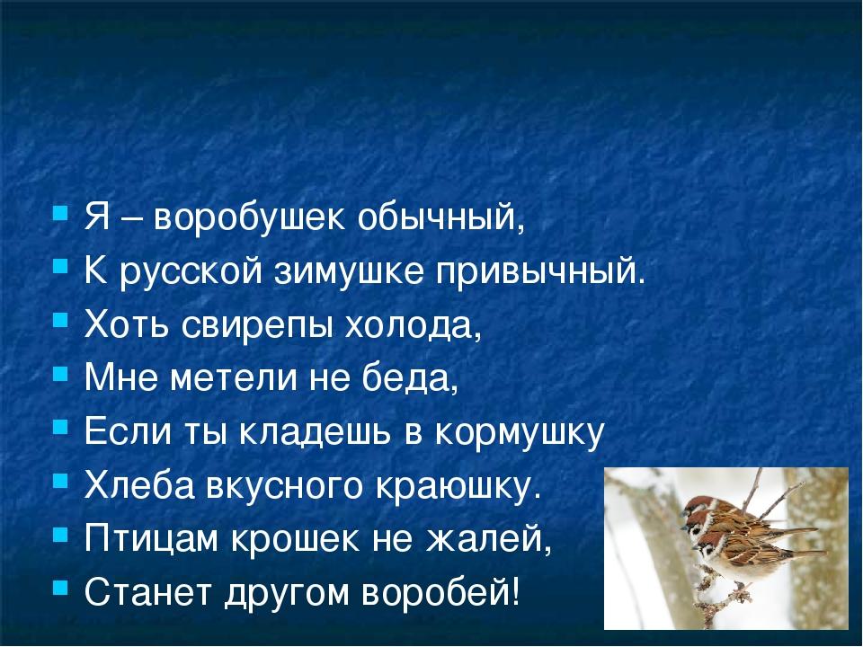 Я – воробушек обычный, К русской зимушке привычный. Хоть свирепы холода, Мне...