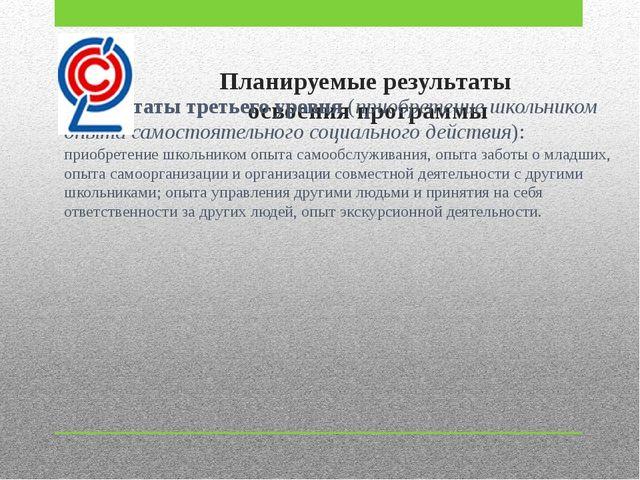 Планируемые результаты освоения программы Результаты третьего уровня (приобре...