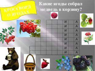 КРОССВОРД О ЯГОДАХ Какие ягоды собрал медведь в корзину? И А И А И А И А И А
