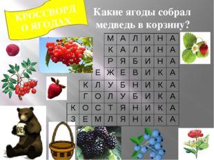 КРОССВОРД О ЯГОДАХ Какие ягоды собрал медведь в корзину? М А Л И Н А К А Л И