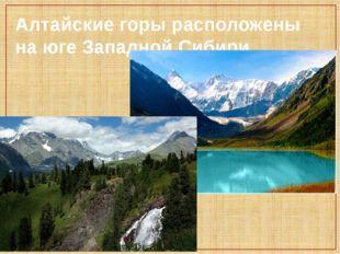 Алтайские горы расположены на юге Западной Сибири.
