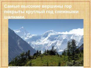 Самые высокие вершины гор покрыты круглый год снежными шапками.