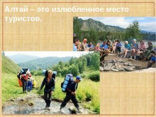 Алтай – это излюбленное место туристов.