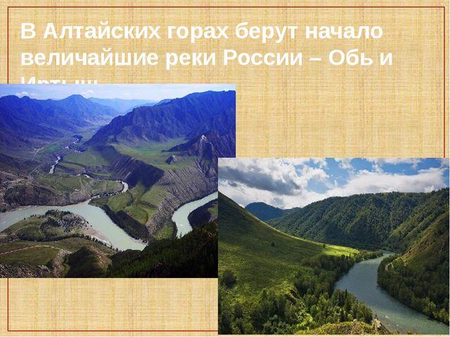 В Алтайских горах берут начало величайшие реки России – Обь и Иртыш.