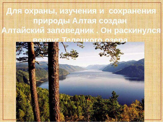 Для охраны, изучения и сохранения природы Алтая создан Алтайский заповедник ....