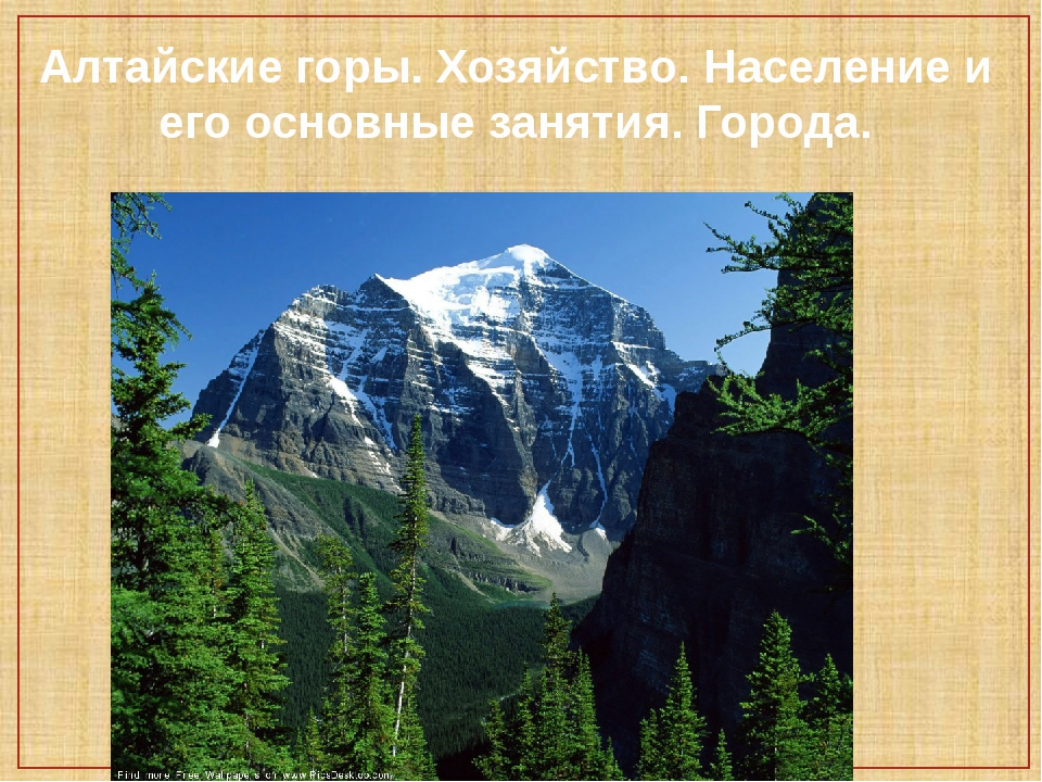 Алтайские горы. Хозяйство. Население и его основные занятия. Города.