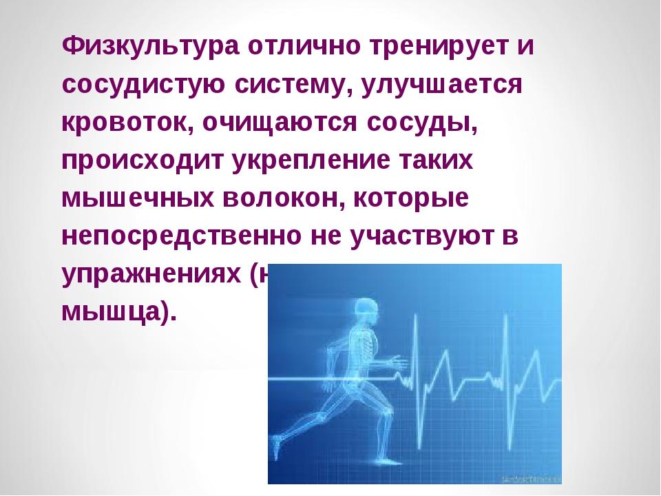 Физкультура отлично тренирует и сосудистую систему, улучшается кровоток, очищ...