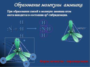 109028' :N + H :N:Н Н Н Н : : Н       Н Н Н 107,30  Форма молекулы –