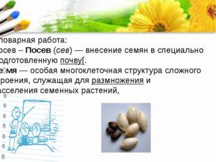 Словарная работа: Посев – Посев(сев) — внесениесемянв специально подготовл
