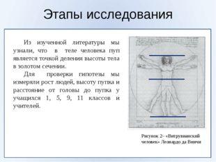 Этапы исследования Рисунок 2– «Витрувианский человек» Леонардо да Винчи Из
