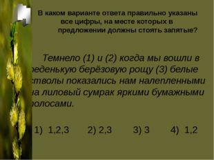 В каком варианте ответа правильно указаны все цифры, на месте которых в предл