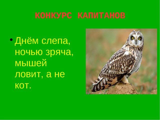 КОНКУРС КАПИТАНОВ Днём слепа, ночью зряча, мышей ловит, а не кот.