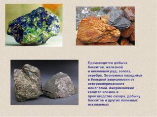 Производится добыча бокситов, железной иникелевой руд, золота, серебра. Экон
