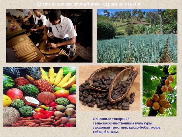 Основные товарные сельскохозяйственные культуры: сахарный тростник, какао-боб...