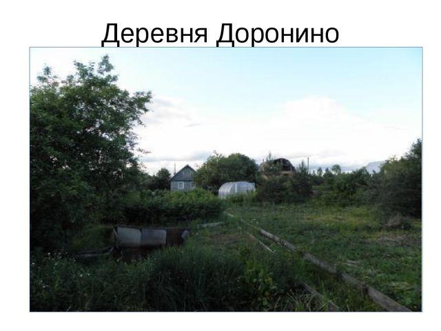 Деревня Доронино