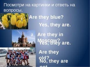 Посмотри на картинки и ответь на вопросы. 1 Are they blue? 2 Are they in Mosc