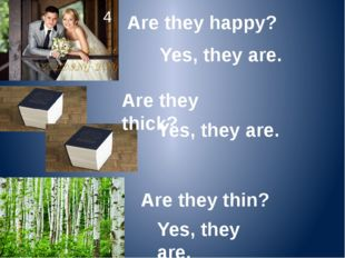 Are they happy? 4 Yes, they are. Are they thick? Yes, they are. Are they thin