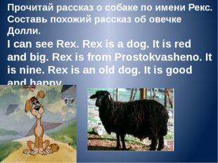 Прочитай рассказ о собаке по имени Рекс. Составь похожий рассказ об овечке До