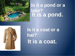 Is it a pond or a lake? It is a pond. Is it a coat or a hat? It is a coat.
