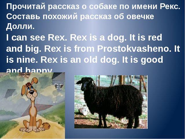 Прочитай рассказ о собаке по имени Рекс. Составь похожий рассказ об овечке До...