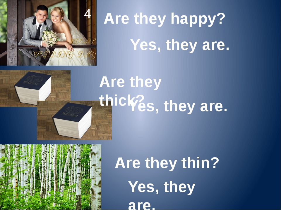 Are they happy? 4 Yes, they are. Are they thick? Yes, they are. Are they thin...