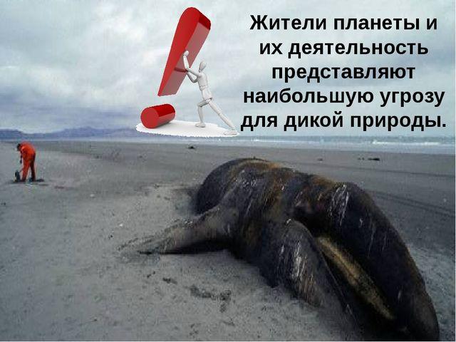 Жители планеты и их деятельность представляют наибольшую угрозу для дикой при...