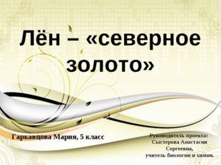 Лён – «северное золото» Гаркавцова Мария, 5 класс Руководитель проекта: Сысте
