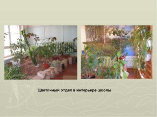 Цветочный отдел в интерьере школы