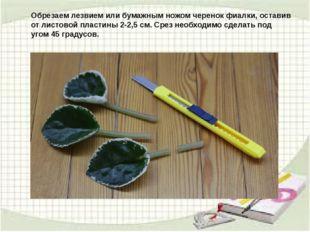 Обрезаем лезвием или бумажным ножом черенок фиалки, оставив от листовой пласт