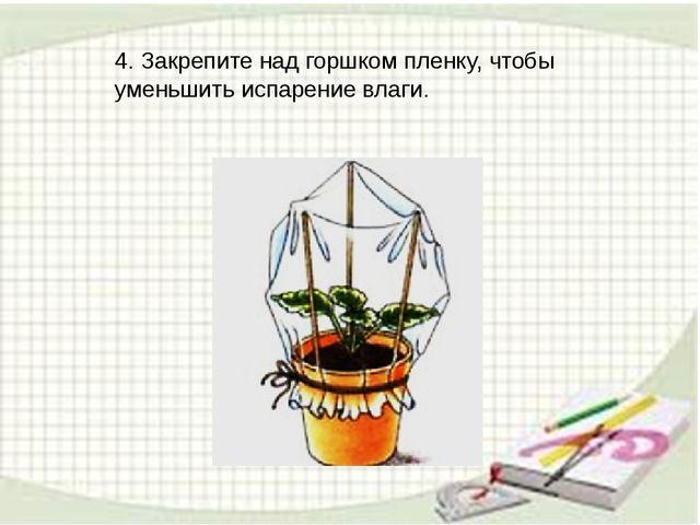 4. Закрепите над горшком пленку, чтобы уменьшить испарение влаги.