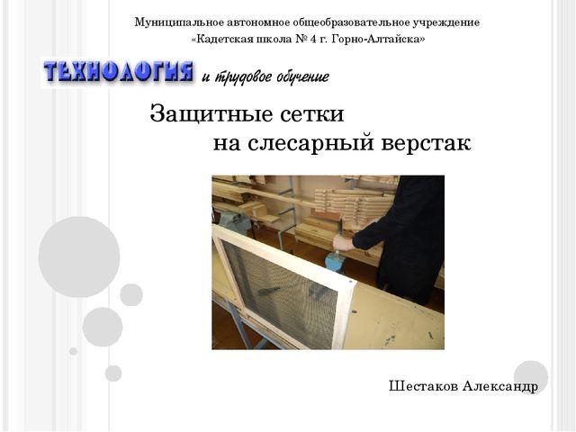 Защитные сетки на слесарный верстак Шестаков Александр Муниципальное автономн...
