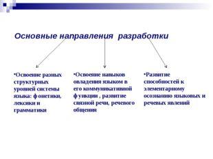 Основные направления разработки Освоение разных структурных уровней системы