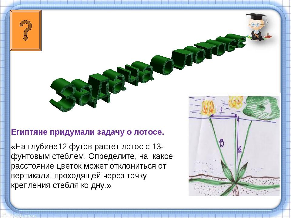 Египтяне придумали задачу о лотосе. «На глубине12 футов растет лотос с 13-фун...