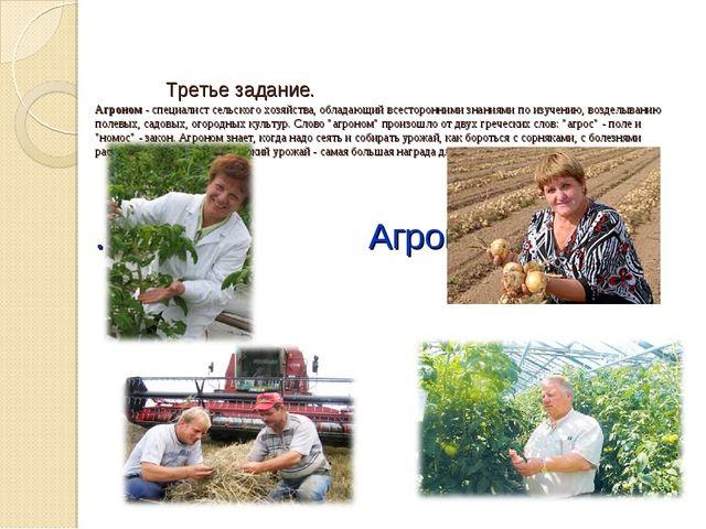 Третье задание. Агроном - специалист сельского хозяйства, обладающий всестор...
