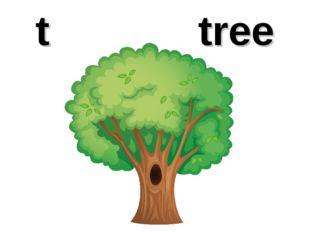t tree