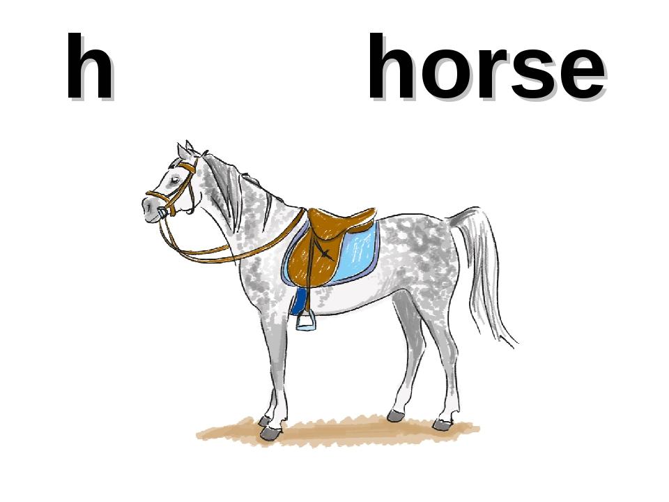 h horse