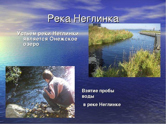 Река Неглинка Устьем реки Неглинки является Онежское озеро Взятие пробы воды...