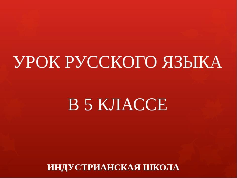 УРОК РУССКОГО ЯЗЫКА В 5 КЛАССЕ ИНДУСТРИАНСКАЯ ШКОЛА