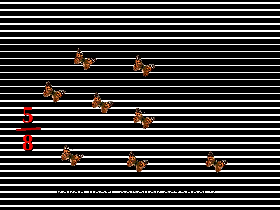 Какая часть бабочек осталась? 8 5