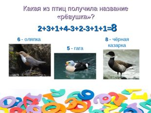 Какая из птиц получила название «рёвушка»? 2+3+1+4-3+2-3+1+1= 6 - оляпка 5 -