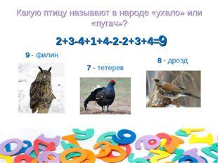 Какую птицу называют в народе «ухало» или «пугач»? 2+3-4+1+4-2-2+3+4= 8 - дро