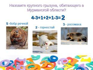 Назовите крупного грызуна, обитающего в Мурманской области? 4-3+1+2+1-3= 2 -