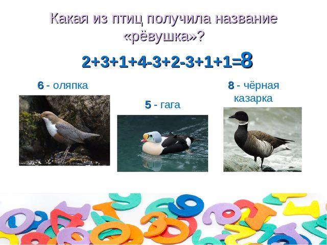 Какая из птиц получила название «рёвушка»? 2+3+1+4-3+2-3+1+1= 6 - оляпка 5 -...